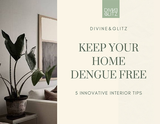 Keep your home dengue free